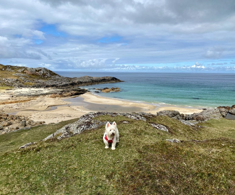 Things to see and do on the Isle of Coll