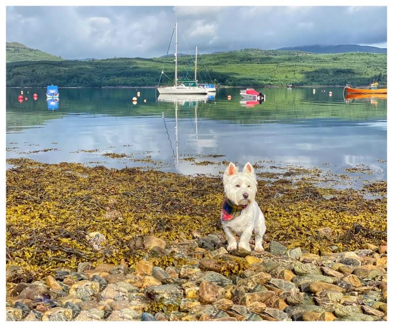 Exploring Argyll