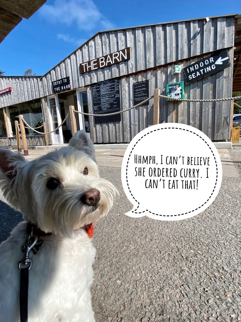 Dog friendly places to eat Cairngorms National Park