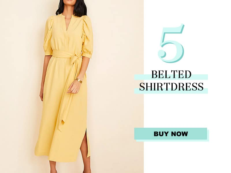 Ann Taylor Belted Shirtdress