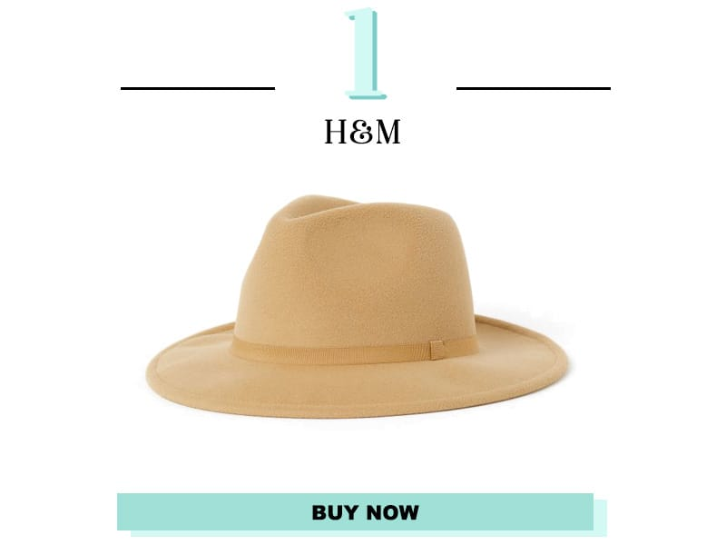 H&M Felt Hat