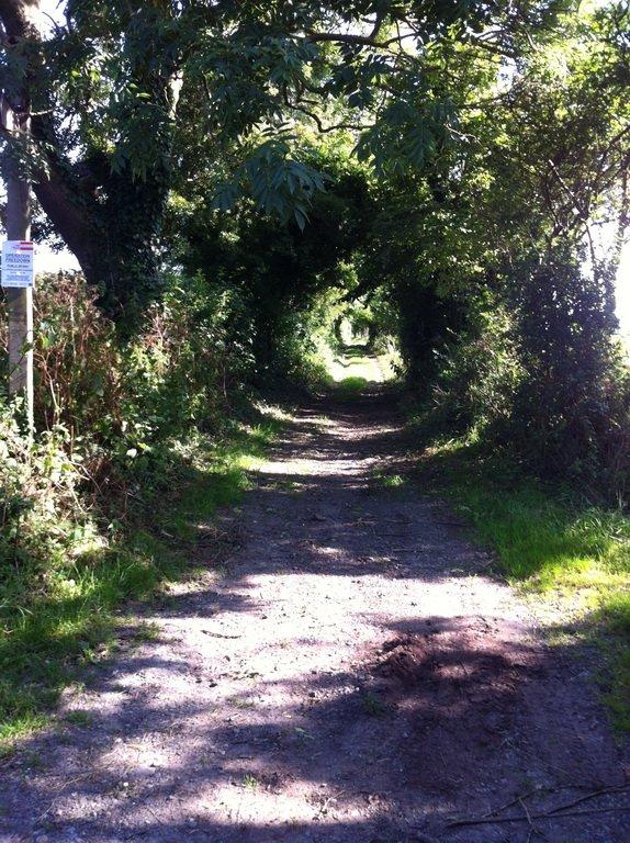 S10 Green Lane 1