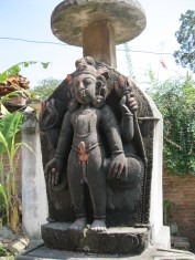 Shiva looking pleased to see you...