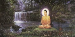 BUDDHAMEDITATINGTREE