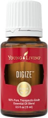 DiGize