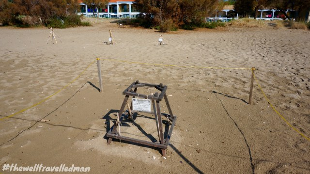 thewelltravelledman kalamaki beach zakynthos turtle beach