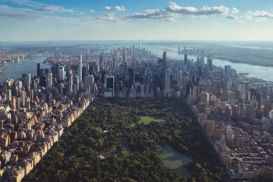 Finding the Light in the Midst of Darkness: A Walk In Central Park