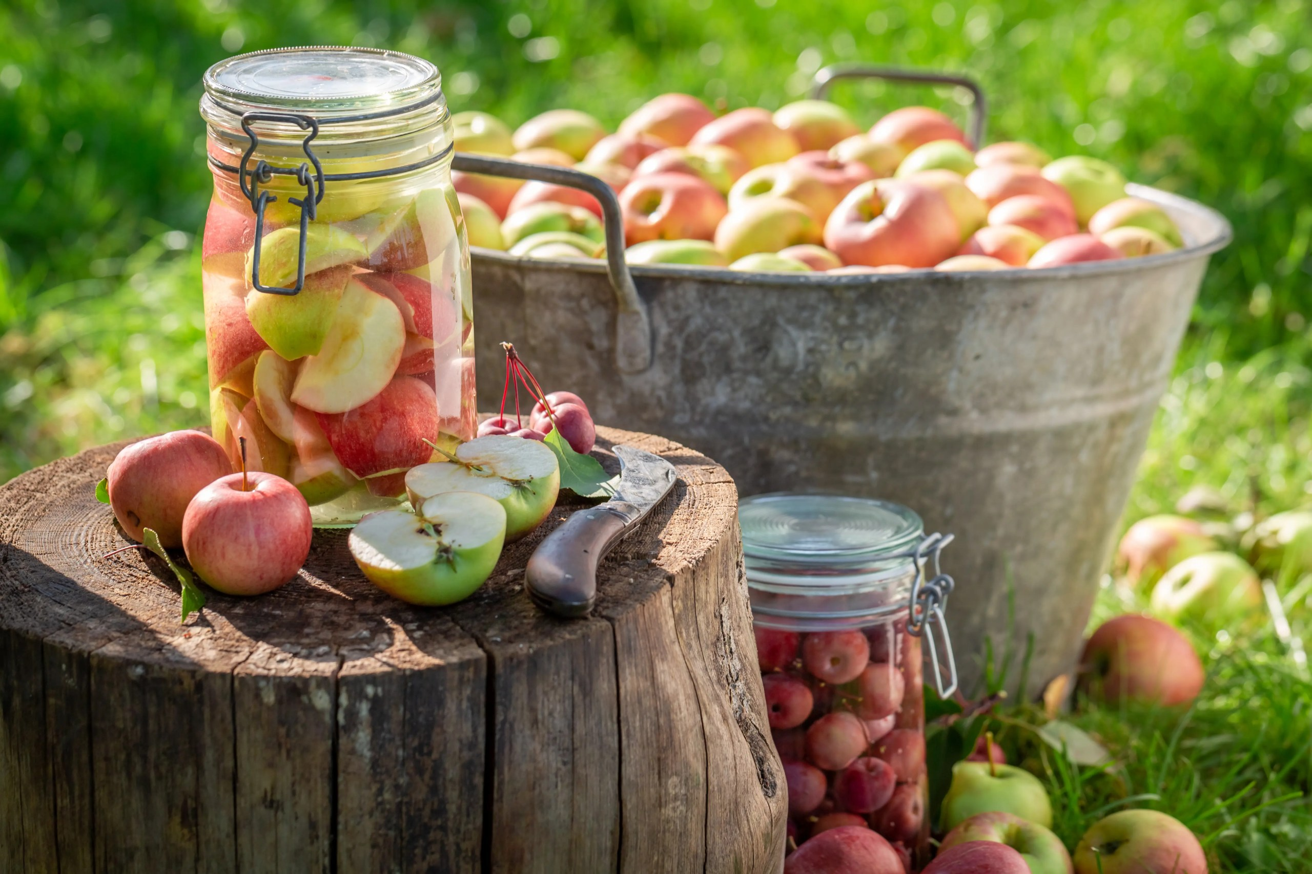 Tips to Transition to Fall: Plus Delicious Applesauce Recipe