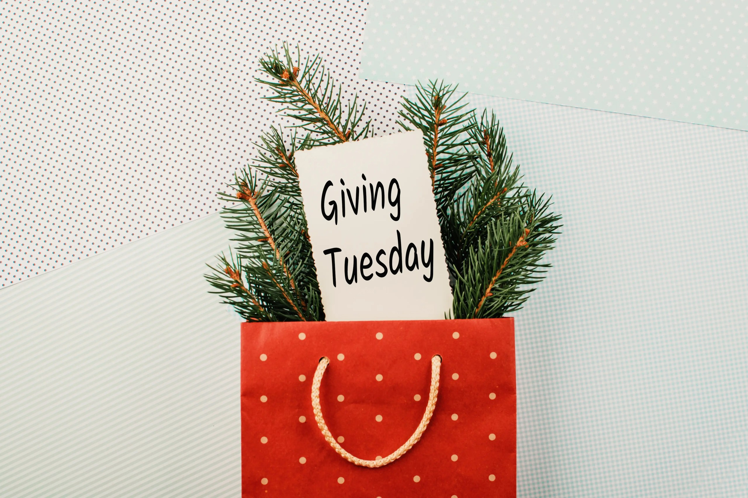 Making an Impact on #GivingTuesday: How Can You Give Back?