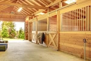 healthy barn