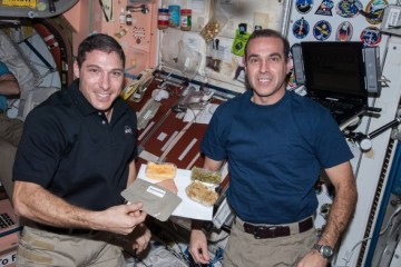Astronauts in ISS take a day off to feast and celebrate Thanksgiving
