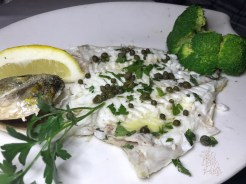DORADO ROYALE mediterranean sea bream grilled and served with steamed vegetables