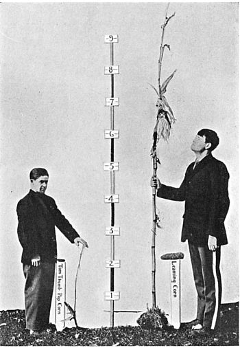 Fig. 76. A short and a tall boy each holding a...