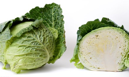 Every cabbage has its pimp