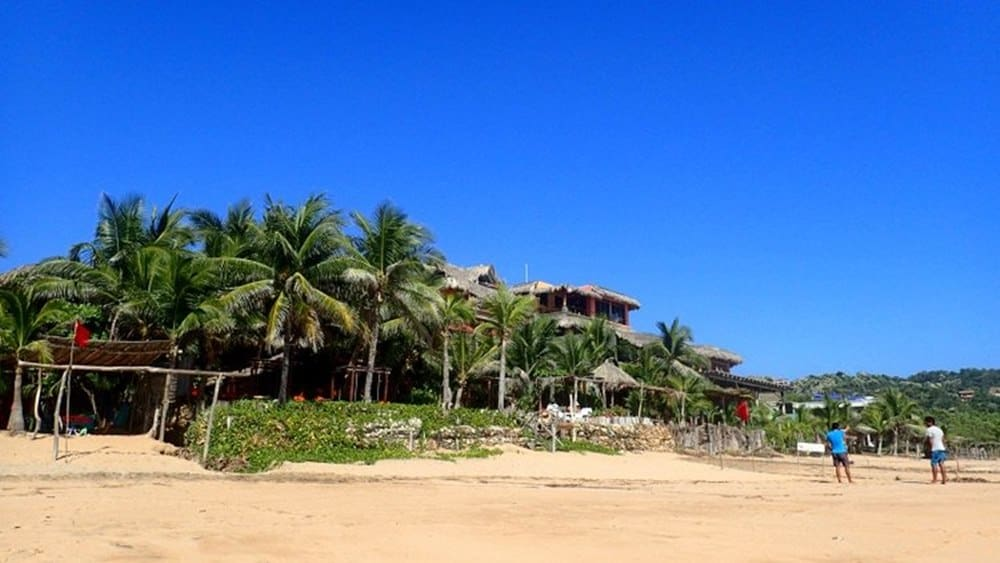 beach-with-palm-trees