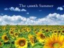 Sun-Flowers-Field-503502
