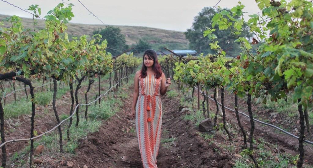 Destination Wedding at Soma Vineyards with TheWeddingTrunk