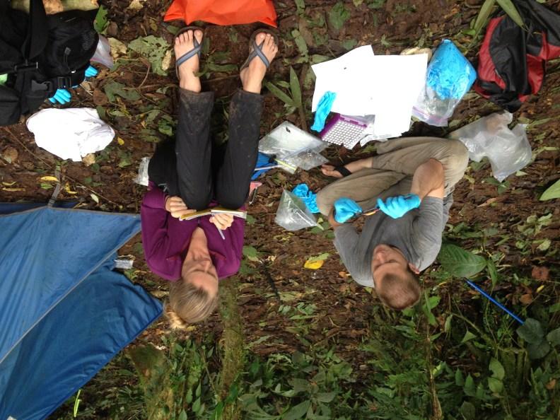 Fieldwork in Panama