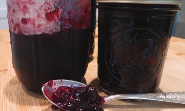 Blueberry-Grape Jam Made with Thomcord Grapes