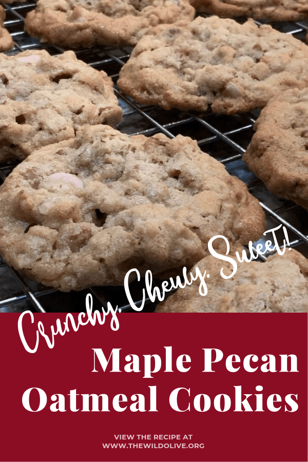 Crunchy, chewy Maple Pecan Oatmeal Cookies