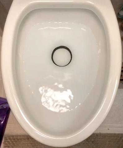 Dometic 320 toilet