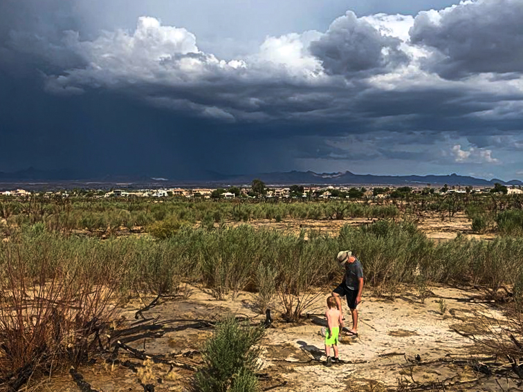 Storm rolling into the Big Bend of the Colorado River Campground from the  East
