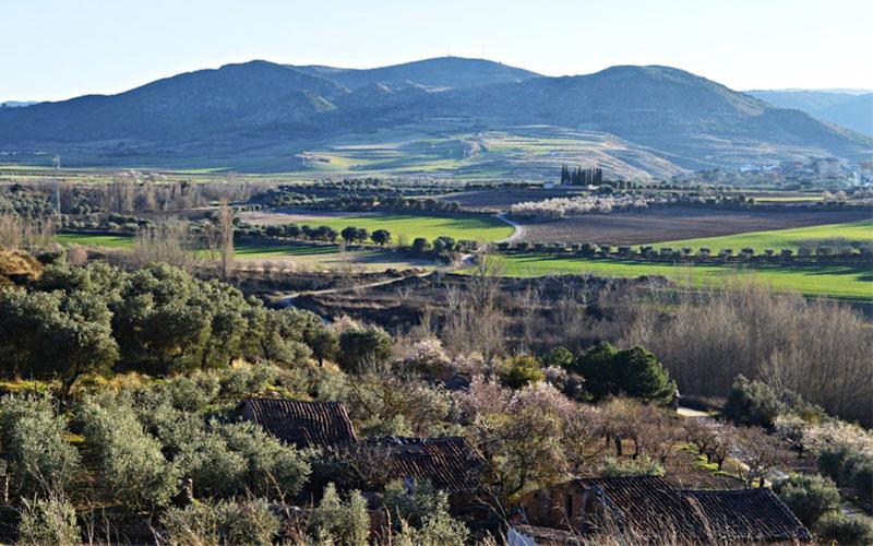Hacienda Grimón
