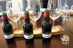 Vergenoegd-wine-blending-bottles