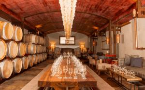 Kalkveld lounge tasting room zandvliet wines