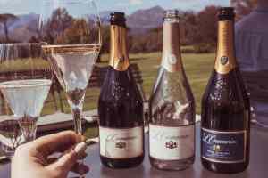 Anthonij Rupert Wyne MCC wine tasting Franschhoek cheers