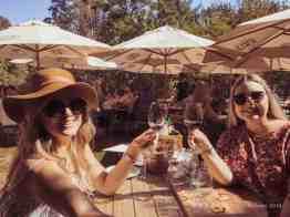 Bellevue Wine Estate wine tasting