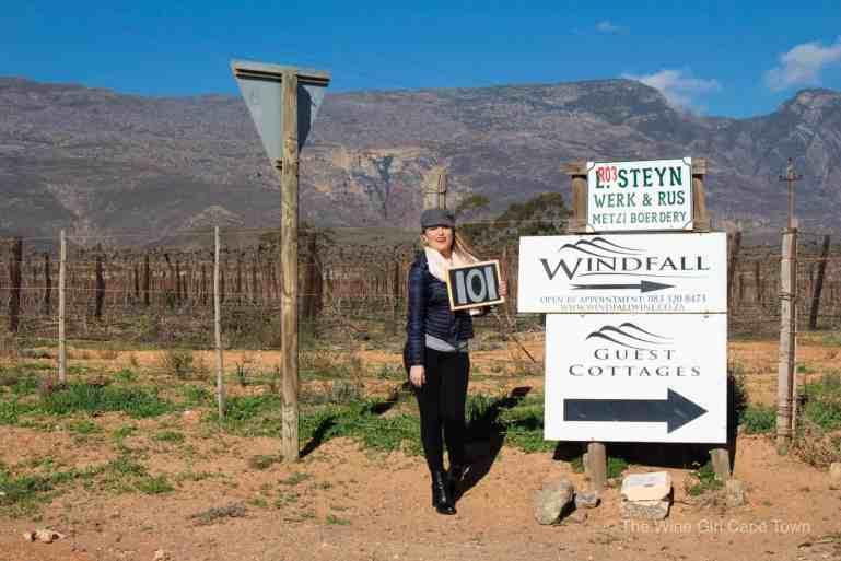 Windfall Wines Robertson