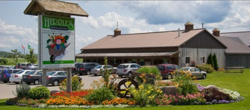 Herrle's Country Farm Market