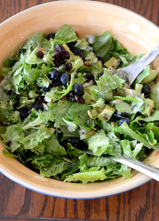 Blueberry Broccoli Salad is my new favourite summertime salad. It has a lot of interesting features-broccoli, avocado, greens, almonds and various toasted seeds.