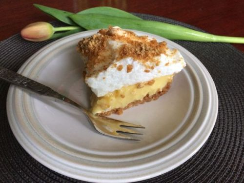 Piece of custard pie with meringue topping and graham crumbs.