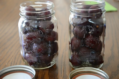 Fresh cherries in mason jars