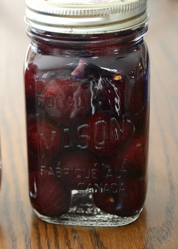 Mason Jar of Bing Cherries in Vodka syrup