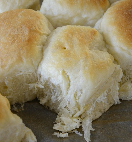 Close up of soft, fluffy sweetened condensed milk dinner rolls.