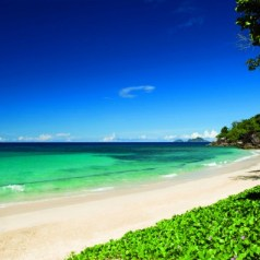 What's your Wine Sign? Find out in The Seychelles….