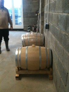 savagnin in barrel
