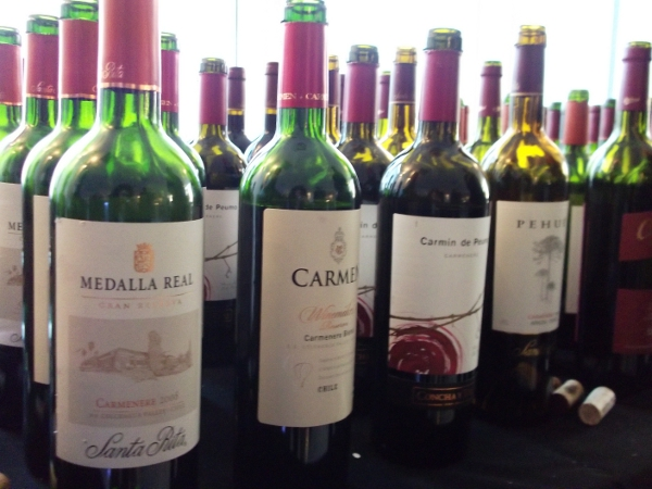 A few of the wines on tasting