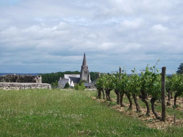 Saumur-Champigny