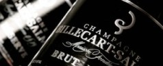 Billecart-Salmon Brut Reserve for New Year's (or anytime, really)