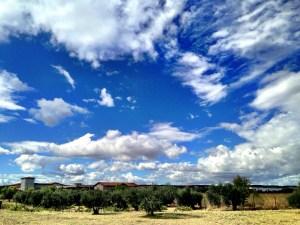 big skies of Navarra