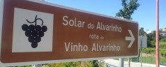 Discovering Portugal's Vinho Verde, visiting Soalheiro vineyards