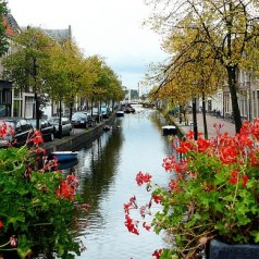 Awesome Amsterdam on a Budget: Eating Out, the Dutch Way