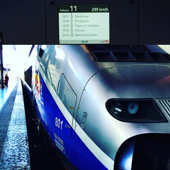 TGV train, Rhone Valley, France