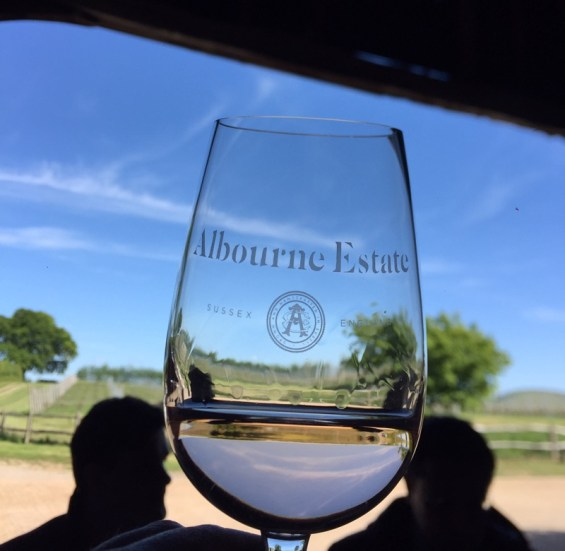 a glass of Bacchus, Albourne Estate, Sussex, England, English Vineyard