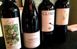 Spotlight on biodynamic wines at Tozi in Pimlico