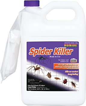 7. Bonide Gallon Spider Killer